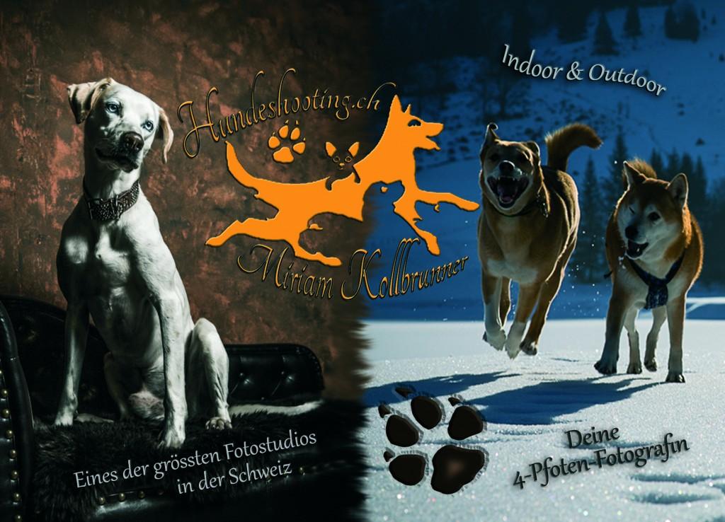 www.hundeshooting.ch