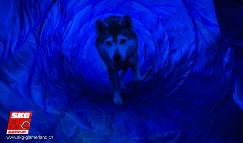 Noch ein bisschen Plausch durch den Blue-Tunnel :-D